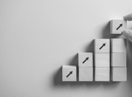 croissance audit vdf expertise comptable