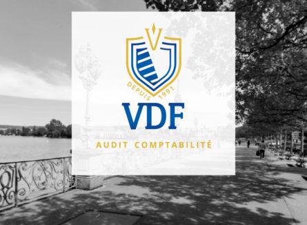 VDF audit site image 2019 logo